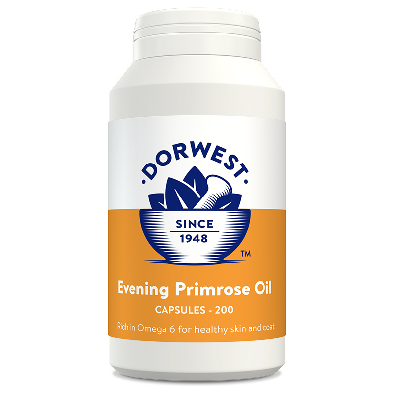 Evening Primrose Oil - Kapsel (200 Stück)
